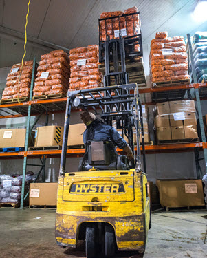 Understanding Food Warehousing